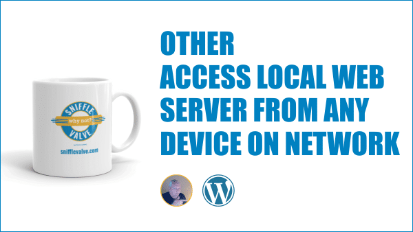 Access Local Web Server