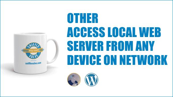 Access Local Web Server